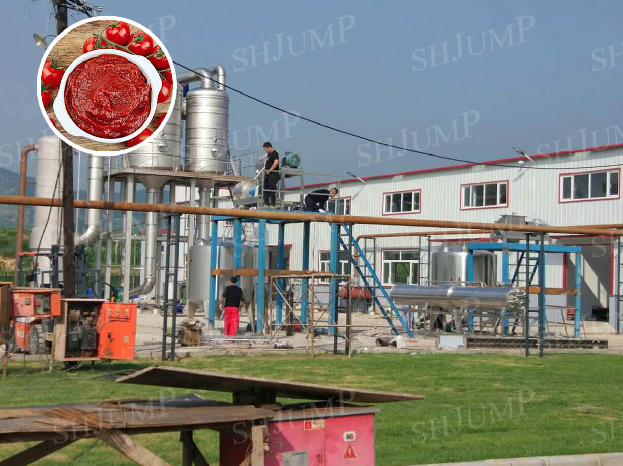 mid-scale tomato paste production line in Hebei,China